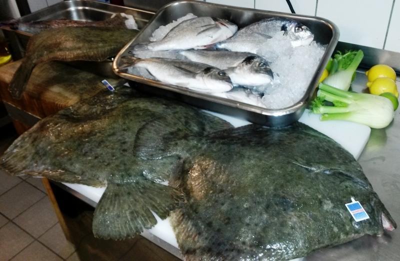 Fisch Lieferung